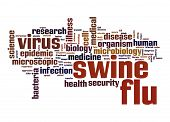 image of swine flu  - Swine flu word cloud image with hi - JPG