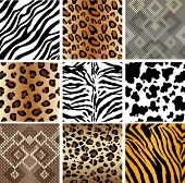 stock photo of jungle snake  - Animal Print seamless Tiling patterns - JPG