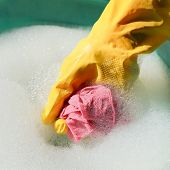 foto of soapy  - hand in yellow rubber glove rinsing wet duster in soapy water - JPG