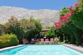 stock photo of oasis  - Swimming pool oasis surrounded by colorful blooming flowers in a sunny California garden landscape - JPG
