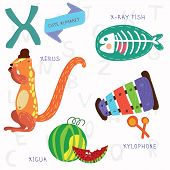 picture of school fish  - Alphabet design in a colorful style - JPG