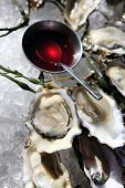 foto of souse  - Opened oysters on ice with red souse