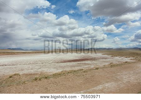 Typical Steppe Landscape