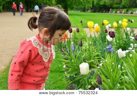 Girl smell spring flowers. Asian ethnicity. Two years old.