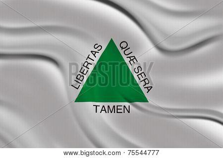 Flag of Minas Gerais, Brazil