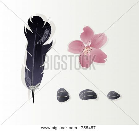 illustration of objects, stones, feathers and a flower