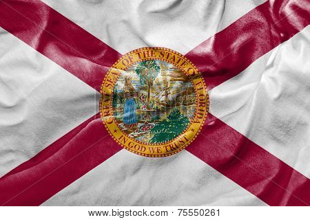 Amazing Flag of the State of Florida, USA