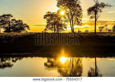 Sunrise in Pantanal, Brazil, Latin America