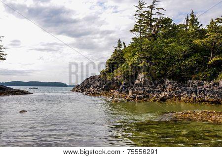 Cove near Tofino