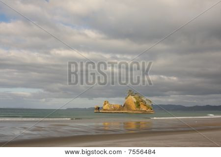 Pungapunga Island Coastal New Zealand