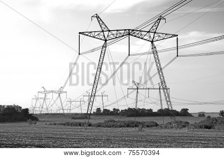 Black And White Power Line