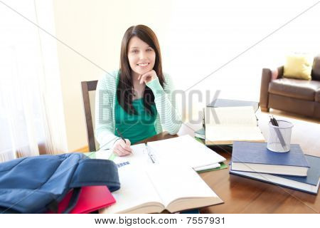 Smiling Teen Girl Studying