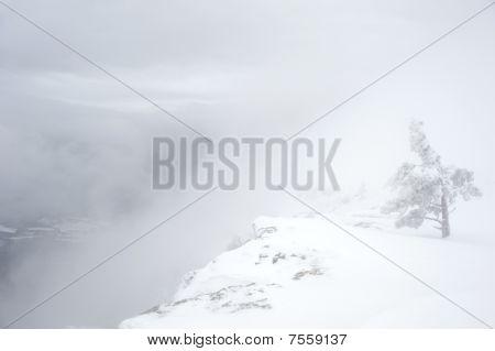 Mountain Scarp