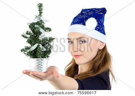Woman with small christmas spruce