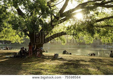 SAO PAULO, BRAZIL - CIRCA AUGUST 2014: People enjoy the Ibirapuera Park in summer time. Ibirapuera Park is the largest park in Sao Paulo, Brazil.