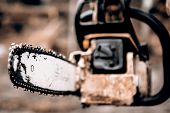 picture of sawing  - Man sawing a log in his back yard with orange saw - JPG