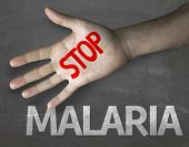 foto of malaria parasite  - Creative composition with the message Stop Malaria - JPG