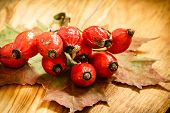 stock photo of dog-rose  - Hawthorn and maple leaf on wooden rustic table background - JPG
