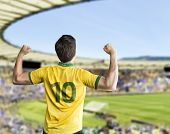 stock photo of competition  - Brazilian fan celebrates on the stadium - JPG