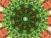 stock photo of creeper  - Kaleidoscope of virginia creeper vine on a rusty background - JPG