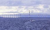 picture of negro  - The Manaus Iranduba Bridge  - JPG