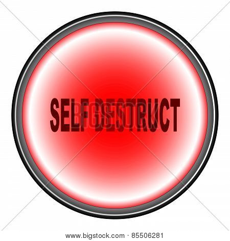 Self Destruct Button