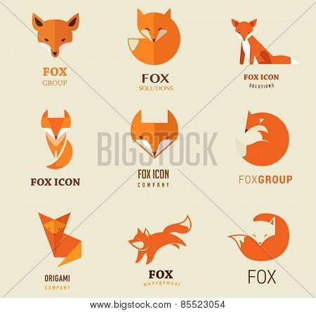 Fox signs, illustrations and elements. collection of vector icons