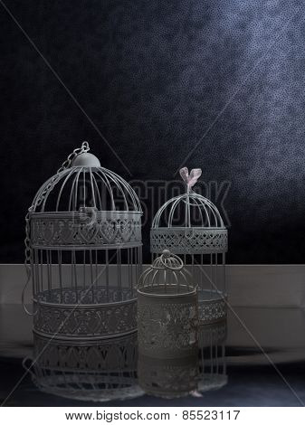 Vintage Style Birdcages In A Dark Interior