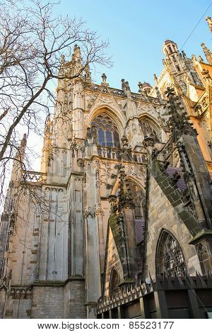Cathedral In The Dutch City Of Den Bosch. Netherlands
