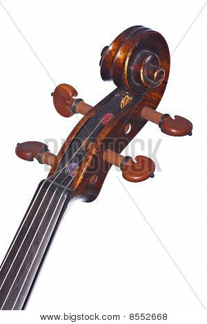Violin Viola Scroll Isolated On White