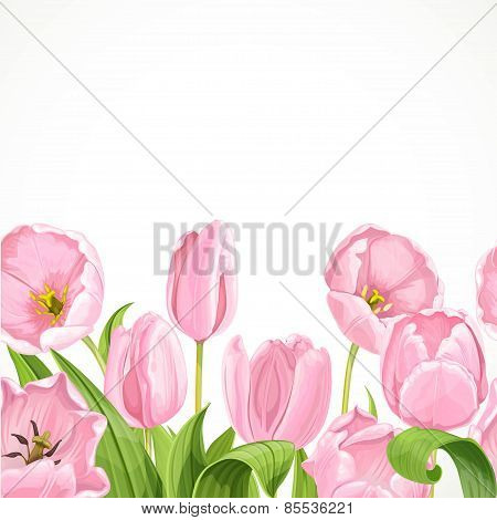 Vector Pink Flowers Tulips Seamless Background