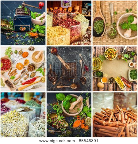 photo collage of herbs and spices