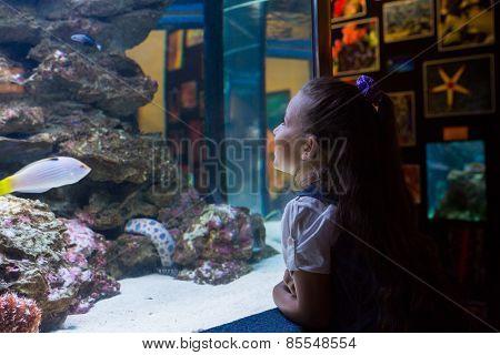 Little girl looking at fish tank at the aquarium