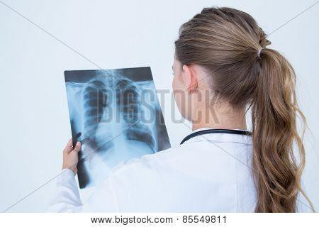 Focus doctor looking at X-Rays on white background