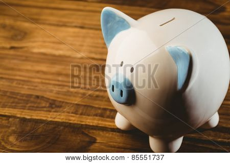 Blue and white piggy bank shot in studio