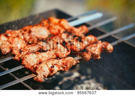 Grilled marinated caucasus barbecue meat shashlik shish kebab