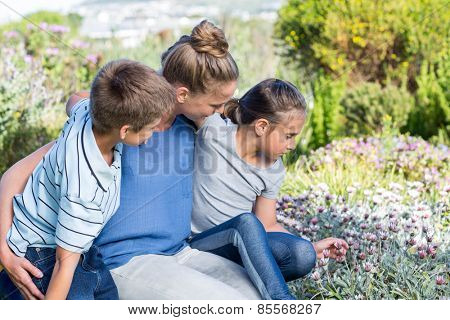 Mother and children tending to flowers in the garden