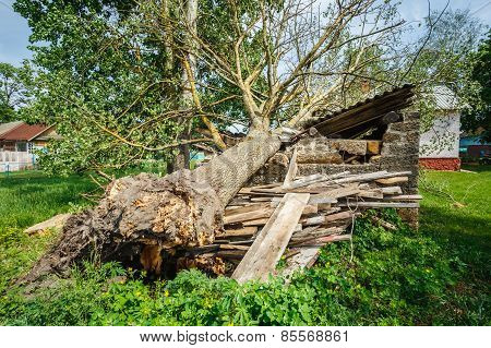 Old Barn Damaged By Recent Hurricane