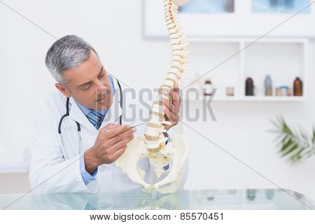 Doctor with anatomical spine in clinic