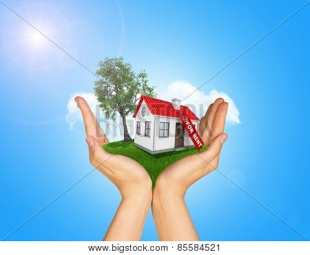 Hands holding house on green grass with label for rent, red roof, chimney, tree, wind turbine. Backg