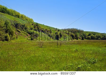 Landscape Of A Green Grassy Hills, Valley, Trees And Blue Sky