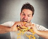picture of grease  - Man eating a sandwich with violent impetuosity - JPG