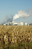picture of ethanol  - An ethanol production plant in South Dakota - JPG