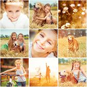 stock photo of kites  - photo collage of family with  dog resting in the field and flying a kite - JPG