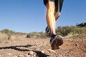 pic of slender legs  - Digital composite of Highlighted leg bones of jogging man - JPG
