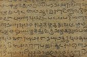 picture of tamil  - Ancient inscriptions on stone wall in Tamil language - JPG
