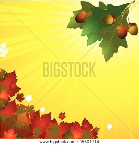 Autumn Background With Leafs And Acorn