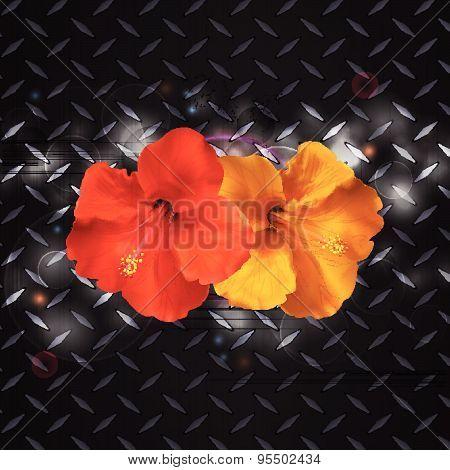 Hibiscus On Metallic Diamond Plate