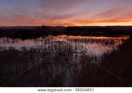 Sunset Penrith Wetlands
