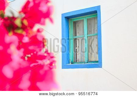 Magenta bougainvillea flowers near window of traditional Greek house